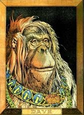 Judge Dredd Orangutan Dave
